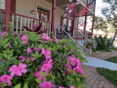 Azaleas at River Park Inn